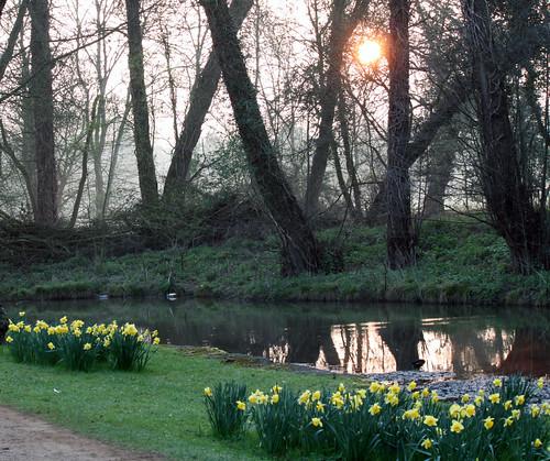 Christ Church Meadow Dawn