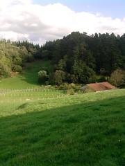 P171010_17.28_[01] (naialaka) Tags: natura basoa belarra baserria berdea paisajea