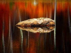 Rock and Atumn Reflection (Stanley Zimny) Tags: park autumn trees lake reflection tree fall nature water colors leaves rock automne catchycolors leaf bravo colorful colours seasons natural fallcolors ripple herbst autumncolors fourseasons autunno autumnal colorexplosion 4seasons otono sgis ahorn jesien jesiennie 100commentgroup