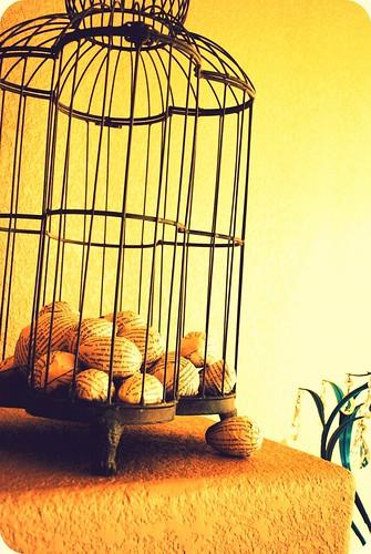 Bookpage eggs