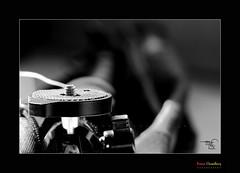 My New Mono Pod [ Model WF   F 1007] (HamimCHOWDHURY  [Active 01 Feb 2016 ]) Tags: life red portrait blackandwhite white black green nature canon eos colorful faces blu sony surreal dhaka vaio rgb bangladesh gettyimages dlsr 60d 595036 framebangladesh