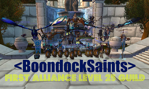First Alliance Guild to Level 25!