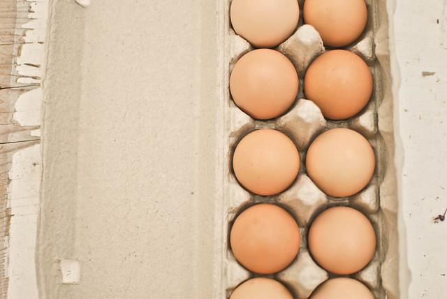 farm fresh eggs.