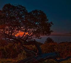 San Francisco On Fire (HavCanon.WillTravel) Tags: sanfrancisco sunrise canon bay goldengatebridge hdr marinheadlands fdrtools