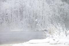 ©Reidar_Nygård_27 (Konsulent1) Tags: vinter snø sn elv sn¿