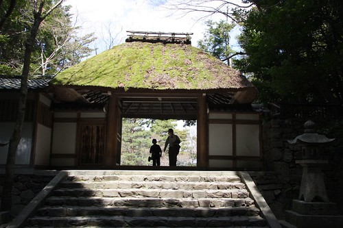 春、じっくりと・・・ / Scenery of the temple,Kyoto