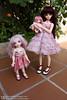 Aurora, Clover & Katty