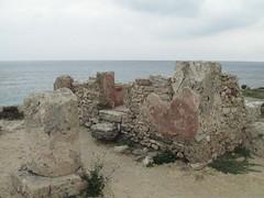2011-01-tunesie-256-tunis-kerkouane