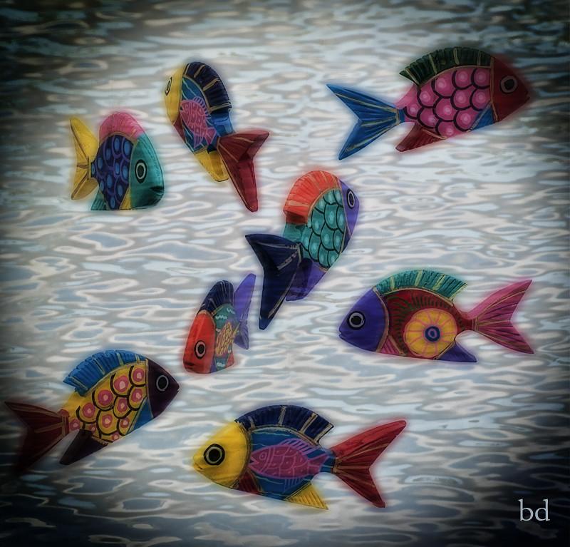 ODC - Something Fishy