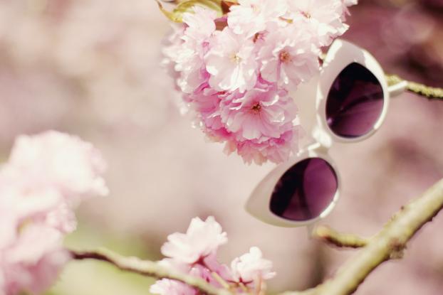 Sakura 10