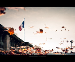 Autumn Memories (Marc Benslahdine) Tags: autumn paris water photoshop automne reflections flag ciel reflets feuilles drapeau lightroom lr3 cs5 tamronspaf1750mmf28xrdiii canoneos50d marcopix marcbenslahdine marcopixcom