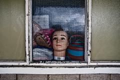 Creepy (Gary Kinsman) Tags: detail london mannequin window weird doll head eerie creepy crack odd canon5d 2009 prop brutalism brutalist elephantcastle se17 heygateestate sigma20mmf18 topographics newtopographics meshwindow