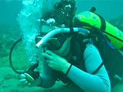 Learning Scuba Diving