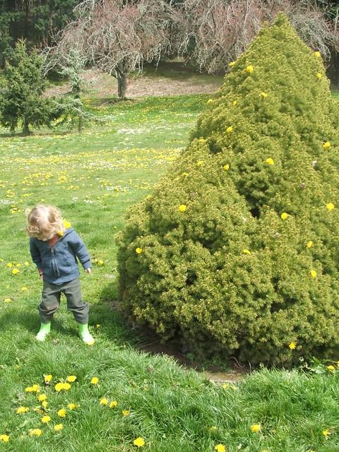 spring2011 229