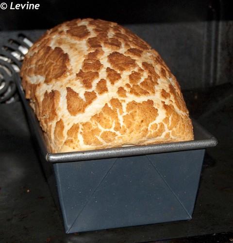 brood recepten oven