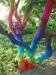 Crochet Tree (babukatorium) Tags: pink blue red orange streetart color tree green art net lana wool yellow circle rainbow colorful purple handmade lace turquoise teal burgundy oneofakind pastel web crochet spiderweb violet shades shade gradient hexagon hippie psychedelic arcobaleno tulle embellished doily multicolor fa whimsical renew haken hkeln croch ganchillo fuxia upcycled uncinetto handdecorated fattoamano  tii horgolt yarnbombing decoratoamano babukatorium
