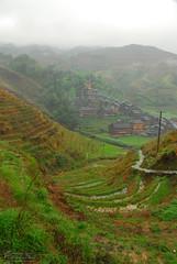 N22_8752 (gadgetdan) Tags: china village guilin guanxi flickrtobeuploaded longjiyaovillage longjiyao