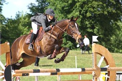 Color matching (HervelineG) Tags: horse cheval jumping noone sfa horseshow cci cce cso eventing complet harasdejardy sautdobstacles concourscompletinternational leajurand