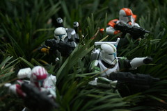 Taking Command (jpberba) Tags: starwars actionfigures homework republiccommando deltasquad afaa