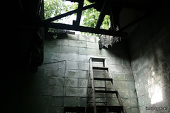 (Into Space!) Tags: light ny newyork green abandoned canon li photo rust escape natural ruin longisland abandon ladder intospace intospaces