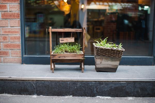 seoul small garden