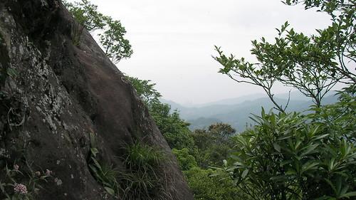 皇帝殿登山步道_09_旁邊的懸涯_2011_05_07