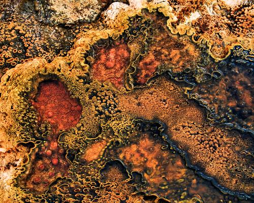 8x10 Black Sand Basin IMG_1498