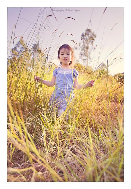 Fields of Long Grass II