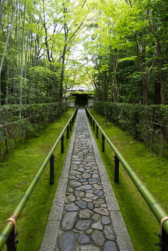 Path to Koto-in