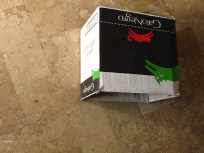 Gato Negro box