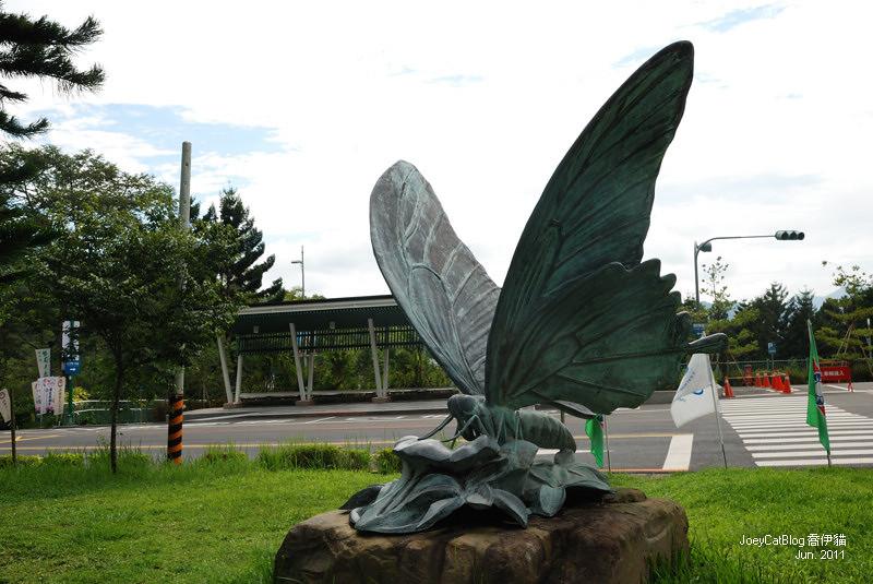 2011_0626【南投】與蝶共舞,我在日月潭蝴蝶園DSC_2072