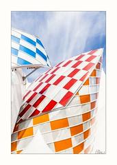 Fondation Louis Vuitton (Elisa.z) Tags: 18200 2016 architecture canon70d paris louisvuitton