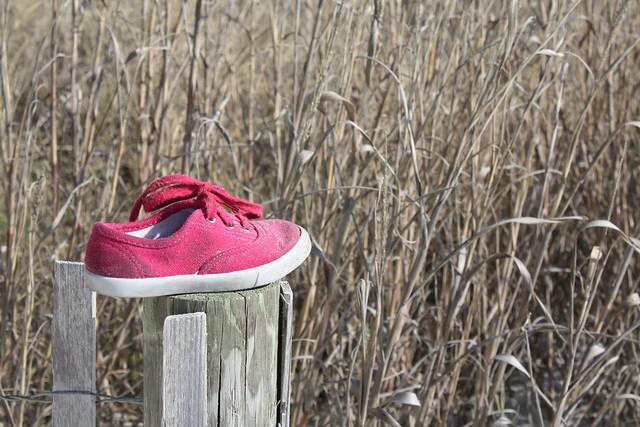 myrtle beach shoe
