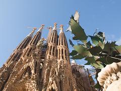 Faana del Naixement. (.carleS) Tags: barcelona temple templo sagradafamlia faanadelnaixement