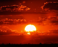 Bold & Bright (PelicanPete) Tags: sunset nature silhouette colorful unitedstates bright florida wildlife national everglades layers preserve bold southflorida palmbeachcounty loxahatchee