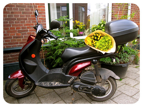 At Wednesday I allways visit the market to buy fresh flowers! by Marcel van Gunst