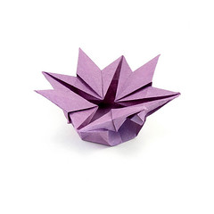 Star Flower Box - Harbin/Fuse (rebecccaravelry) Tags: star origami box fuse harbin tomokofuse robertharbin