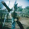 My Neighbour is an Installation Artist pt.III (DE FRA) Tags: art 120 holga daughter rape dont your installation portra brut bambolotto