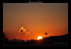 Love is in the Air. (Rimi's Magik!) Tags: travel india fall tourism nature beautiful sunrise season landscape spring chennai incredible tamilnadu seabeach thiruvanmiyur