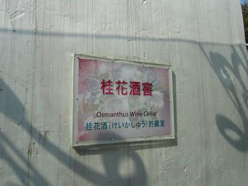 2011台北花博-文化A館-桂花酒窖.JPG