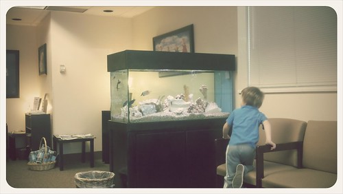 Judah checking out the fish at the ob!