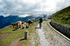 Crossing the alps I