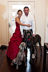 Family Portrait (bivoir) Tags: family wedding dog pet cute me marriage andrew