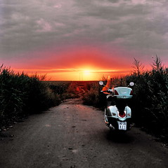 The Unknown Road (Vespazian) Tags: road sunset film rolleiflex vespa dusk medium format sl66 crops put zalazak sunca sumrak puteljak usevi srednji