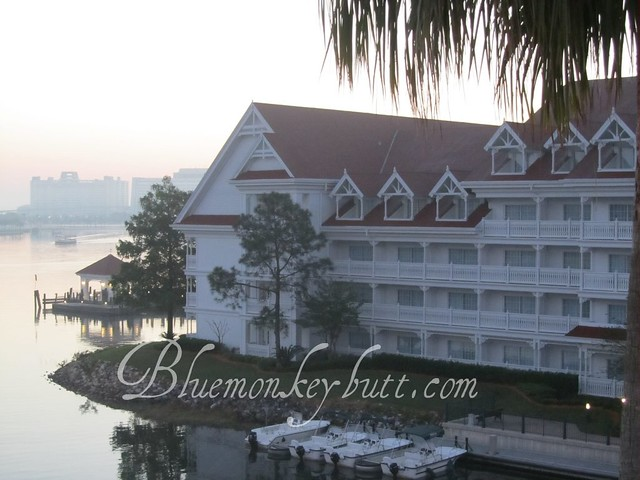View from our room at the Grand Floridian at dawn