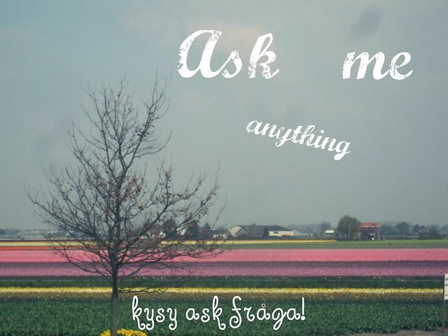 kysykysy