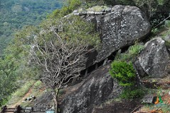 Snare Rock (Sigiriya)