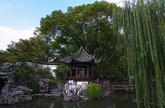Yuyuan Garden (garden Of Contentment)