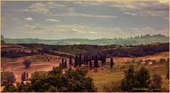 Torrita di Siena .... su tela (leon.calmo) Tags: canon siena toscana valdorcia hdr paesaggio colline eos50d leoncalmo