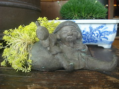 "Yellow Moss in Bronze Gnome • <a style=""font-size:0.8em;"" href=""http://www.flickr.com/photos/51721355@N02/5763314346/"" target=""_blank"">View on Flickr</a>"